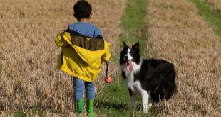 Los niños pueden comportarse mejor y ser más amables si tienen un perro, según un estudio
