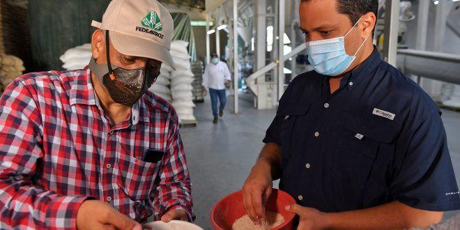 Gobernador del Cesar impulsa iniciativas para el sector arrocero