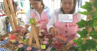 Este viernes inicia la Primera Feria Virtual Unidos por las Víctimas