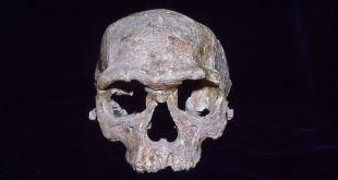 Científicos afirman que no es posible ubicar el origen de la humanidad