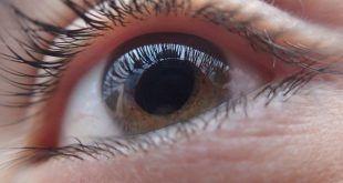 Desarrollan implantes de retina que prometen dar una visión artificial a los ciegos