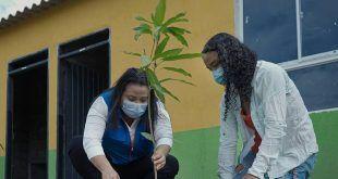 Con jornada de arborización Fonvisocial apropia a familias beneficiada en El Porvenir